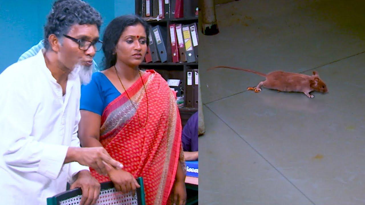 Marimayam June 10,2016 Epi 349 Comedy Programme