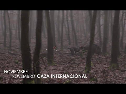 Noviembre 2017: Caza Internacional