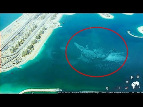 Video 7 Mysterious Deep Sea Creatures Spotted On Google Earth #3 download in MP3, 3GP, MP4, WEBM, AVI, FLV January 2017