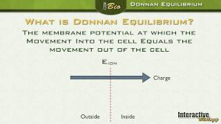 006 Donnan Equilibrium And Driving Force