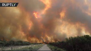 Мощные лесные пожары бушуют в Аргентине