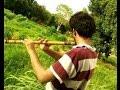 Flute Theme