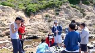 mus-hiking-ua-si-nram-ntug-hiav-txwv-piont-reyes
