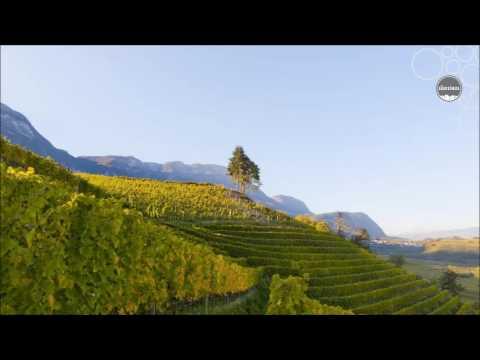 Weinland Südtirol - Überetsch