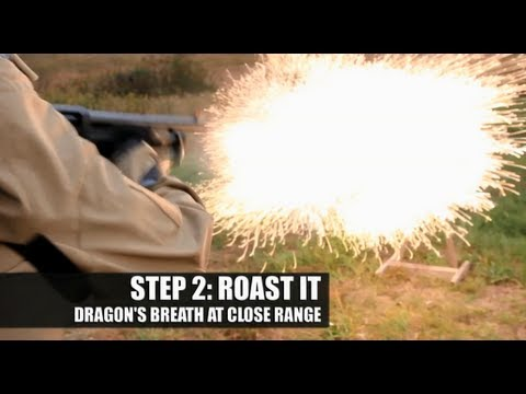 How to Roast a Thanksgiving Turkey by Shooting It