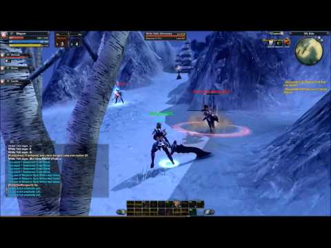 RaiderZ PvP Gameplay Berserker
