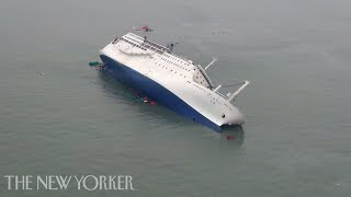 Video What Went Wrong in the South Korean Ferry Disaster? | The New Yorker MP3, 3GP, MP4, WEBM, AVI, FLV Juli 2019
