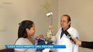 Pediatra doa muda de árvore para cada bebê que nasce