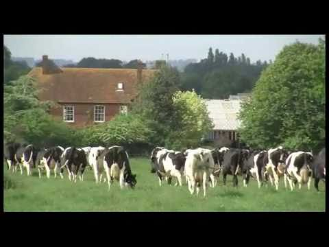Congress European Dairy Farmers 2011, Stoneleigh, UK