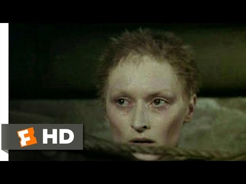 Sophie's Choice (6/10) Movie CLIP - The Resistance (1982) HD