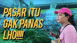 Video Hunting Udang dan Kepiting Jumbo ke Pasar Tradisional MP3, 3GP, MP4, WEBM, AVI, FLV Desember 2018