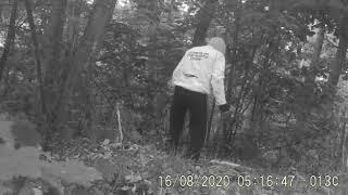 Facet myślał, że nikt go nie widzi. To, co robił w lesie, przechodzi ludzkie pojęcie.