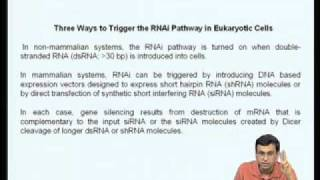 Mod-10 Lec-38 Regulation Of Eukaryotic Gene Expression By Small RNAs (RNA Interference, RNAi)