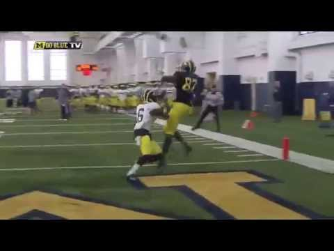 Devin Funchess one handed catch 2014 video.