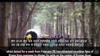 Gapyeong-gun South Korea  City pictures : Nami Island, Gapyeong-gun, Gyeonggi-do