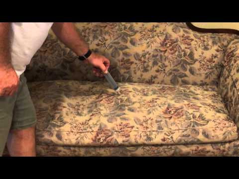 How to remove cat odor from couch