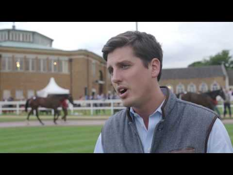 Tattersalls July Sale 2017 Day 3