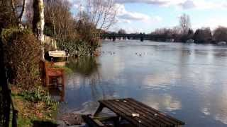 Marlow-on-Thames United Kingdom  City new picture : River Thames Flooding in Marlow UK