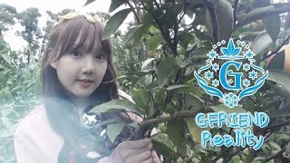 [ENG SUB] GF Reality EP.2 : GFriend - Where R U going?! in Jeju (여자친구 - 어디 감수광?! in 제주도), clip giai tri, giai tri tong hop