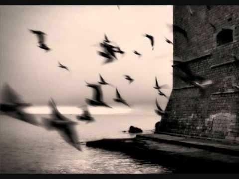 Mick McAuley & Winifred Horan ~ The Chorus Reels