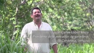 El Sistema Quesungual en Honduras