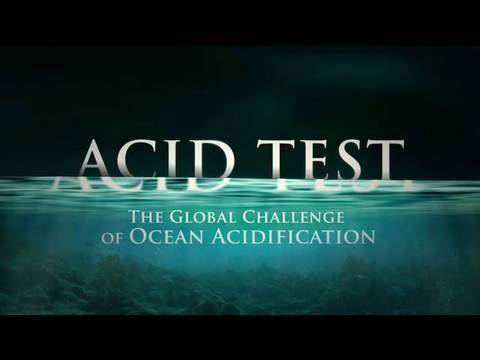 ocean acidification - This groundbreaking NRDC documentary explores the startling phenomenon of ocean acidification, which may soon challenge marine life on a scale not seen for t...