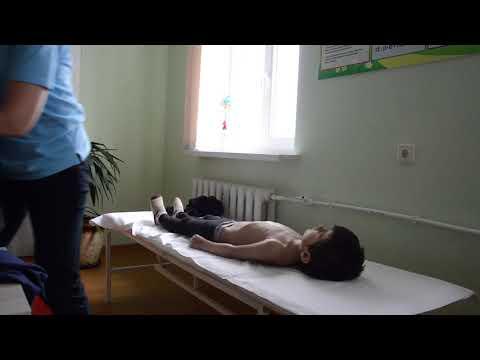 """Проект """"Иппотерапия для детей с инвалидностью"""" Семинар-консультация в ГБУ РРЦ"""
