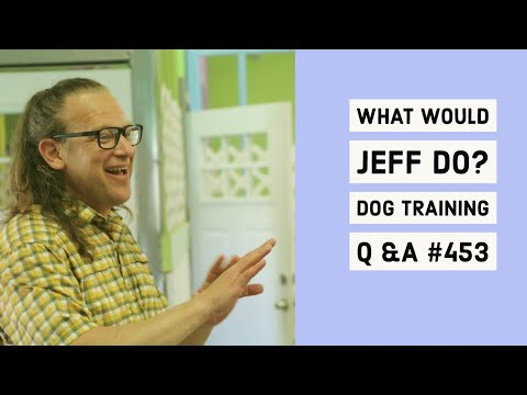 Stop dog whining | Dog fearful of strangers | What Would Jeff Do? Dog Training Q & A #453