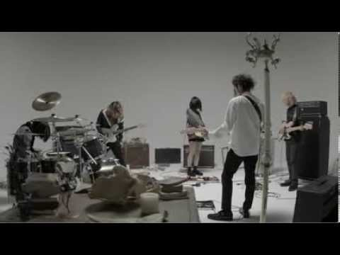 Music Video「猿は木から何処へ落ちる」