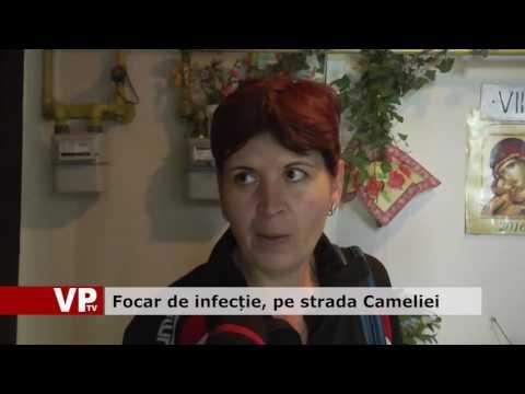 Focar de infecție, pe strada Cameliei