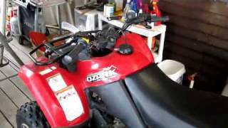 3. Cold Start Suzuki Ozark 250 ( Quad 4 wheeler )