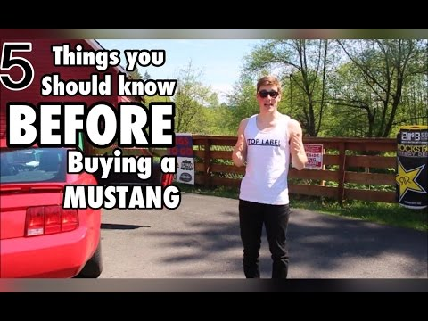 5 Things you should know before buying a mustang