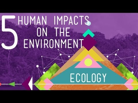environment - Hank gives the run down on the top five ways humans are negatively impacting the environment and having detrimental effects on the valuable ecosystem service...