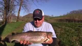 Stony Creek (VA) United States  city images : Trout Fishing Virginia's Cripple Creek