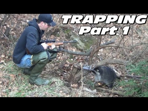 trapping - Trapping Season 2012-2013. In this two part video follow Leatherwood Outdoors as they trap for Fox, Raccoon, Opossum, Skunk, Coyote, Mink, Weasel, Beaver and...