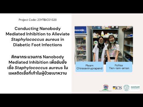 [23YTBIC01020] Conducting Nanobody Mediated Inhibition to Inhibit Staphylococcus aureus in DFIs