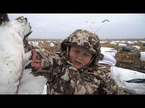 HUNTING OVER DECOYS FOR SNOWS