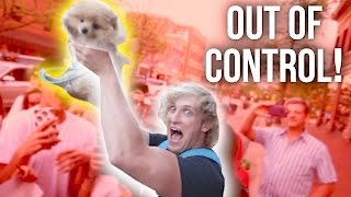 THEY ALMOST KILLED MY DOG!