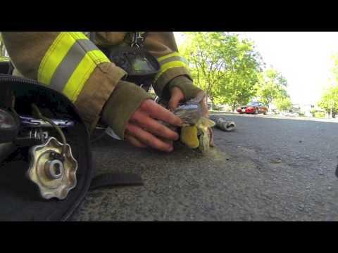 california-pompiere-salva-gattino-recuperato-da-un-incendio-in-una-casa-219