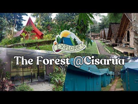 The Forest @Cisarua (EXPLORE) ~ Rekomendasi penginapan dan glamping nyaman di Puncak