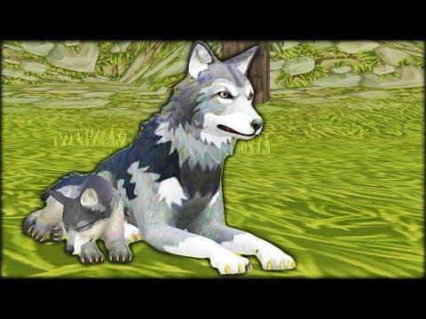 ВОЛЧЬЯ СЕМЬЯ настоящая жизнь зверей в диком лесу симулятор жизни животных в детском видео от #ФГТВ