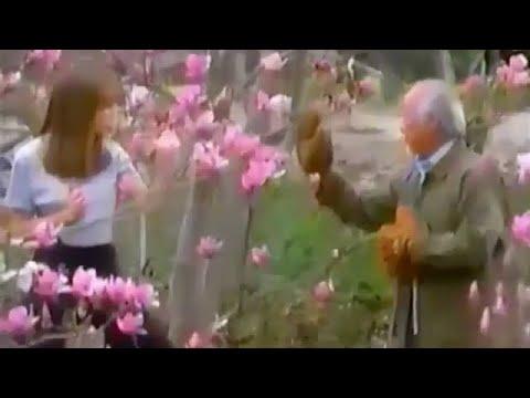 The Next Karate Kid (1994) - TV Spot 1