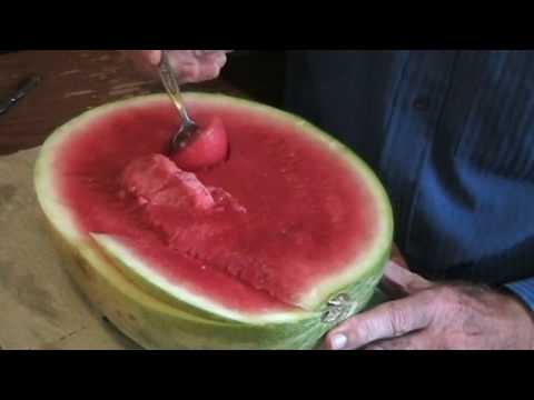 How to Eat a Watermelon Tutorial Tom Willett