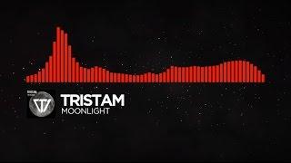 [DnB] - Tristam - Moonlight
