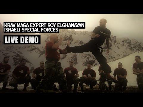 Krav Maga Expert Roy Elghanayan