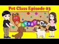 Puppy Learn Numbers | Pets Class 003 | Tho Nguyen Animation