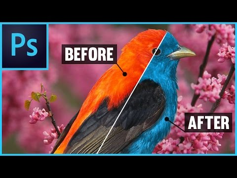Photoshop CS6/CC: How To Change Color of an Object - With Layers (Adobe Photoshop Tutorial)