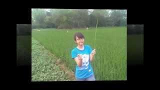 Girl Xinh Ninh Binh Ll Tổng Hợp Những Bức ảnh đẹp Của Người Con Gái Ninh Bình