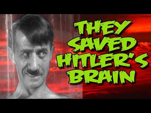 Dark Corners - They Saved Hitler's Brain: Review