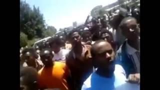 Ethiopia: Yedeferesh Yiwdem